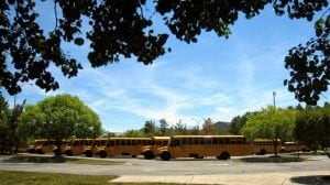 Green Hope High Bus